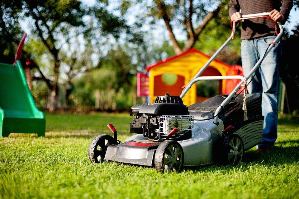 Horaires de tonte de votre pelouse