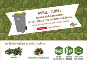 Reprise de la collecte des déchets végétaux.